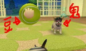 dogs0722.jpg