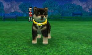 dogs0726.jpg