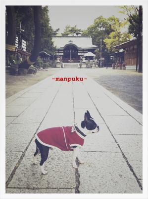 茨木神社2