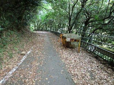 笠置トンネル側道-3