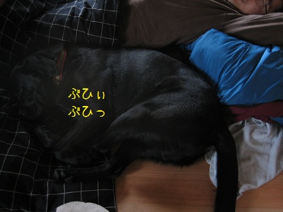 b20111024-IMG_1506.jpg