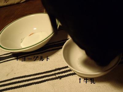 b20111114-PB140187.jpg