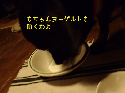 b20111114-PB140188.jpg