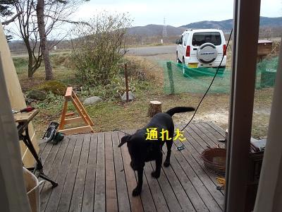 b20111127-PB270114.jpg