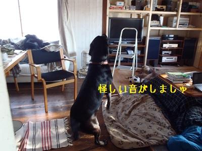 b20111206-PC060215.jpg