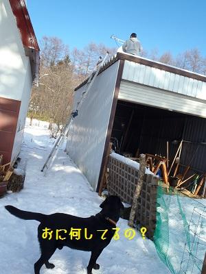 b20111206-PC060225.jpg