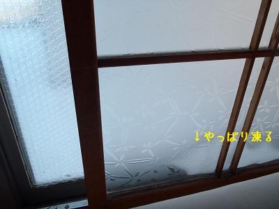 b20111220-PC200100.jpg