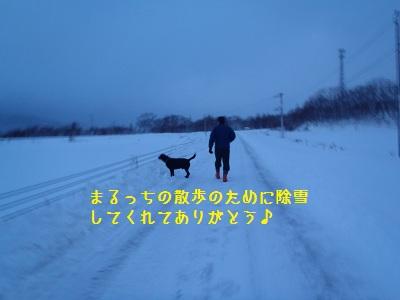 b20111223-PC230157.jpg