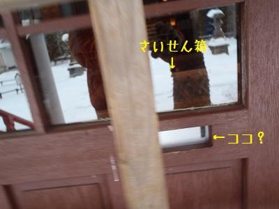 b20120111-P1110047.jpg