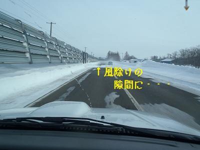 b20120128-P1280131.jpg