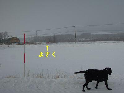 b20140201-DSCN9898.jpg