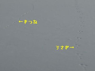 b20140201-DSCN9899.jpg