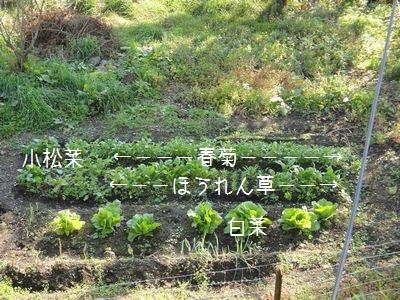bb20110928-DSC00884.jpg