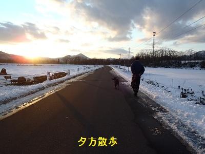 bb20111206-PC060248.jpg