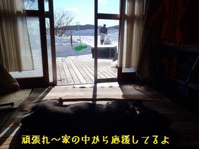 bb20120104-P1040210.jpg