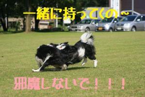 20110812_004mt.jpg