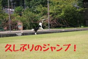 20110812_006mt.jpg