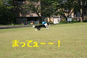 20110812_007mt.jpg