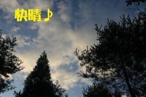 20110813_016mt.jpg