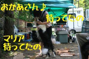 20110814_008mt.jpg
