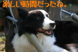 20110814_011mt.jpg