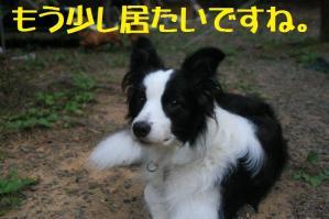 20110814_013mt.jpg