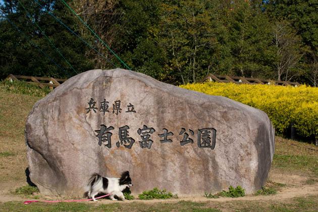 兵庫県立有馬富士公園-001