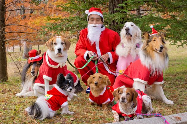 みんなでクリスマス♪-3