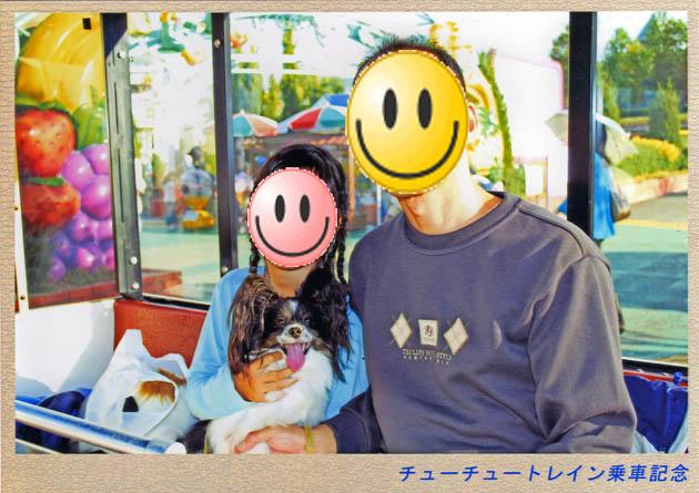 パピヨン撮影会inフラパ(その6)お昼の写真はこれでおしまい~-018