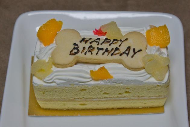 マリィ8歳のお誕生日♪-022