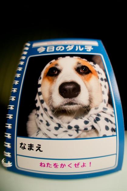 AOB特別賞受賞!~『今日のダル子』のお題企画~-007