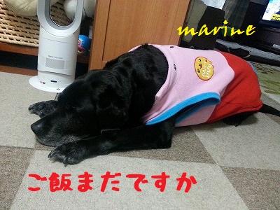 20140127marine2.jpg