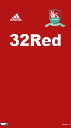 12-13 プレミア スウォンジー 04