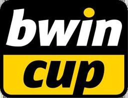 256 リーグ 大会ロゴ bwinカップ