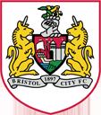 128 エンブレム  プレミアリーグ  ブリストル・シティFC