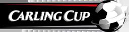 256 リーグ 大会ロゴ カーリングカップ