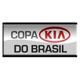 256 リーグ 大会ロゴ コパ・ド・ブラジル2012 01