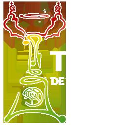 256 リーグ 大会ロゴ タッサ・デ・ポルトガル02