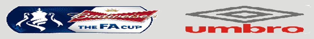 壁 リーグ プレミア07 FA