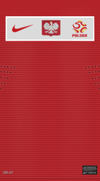 ポーランド 11