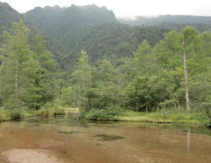 tasiroike2011-8.jpg
