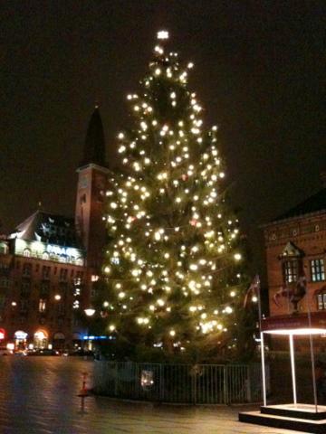 DK_Dec2011_22.jpg