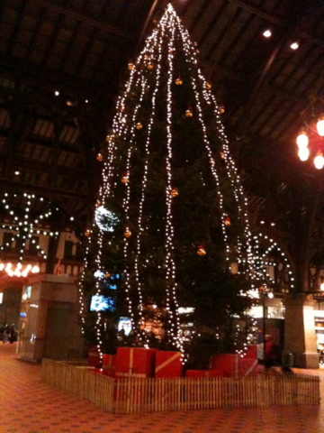 DK_Dec2011_23.jpg