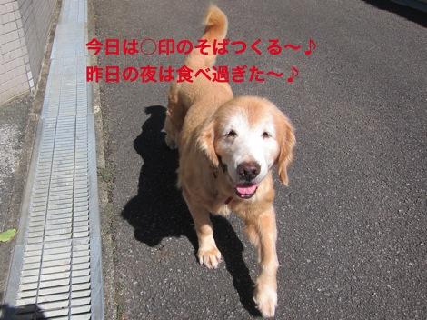 th_IMG_4236−1