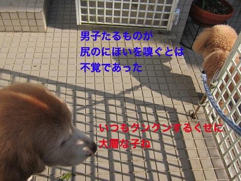 th_IMG_4718−1