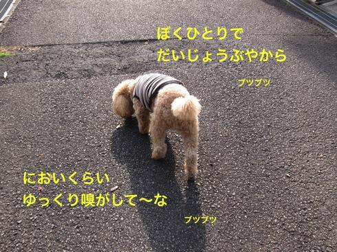 th_IMG_4968−1