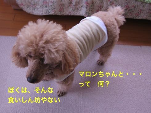 th_IMG_5172¥1