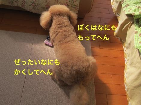 th_IMG_4934-1.jpg