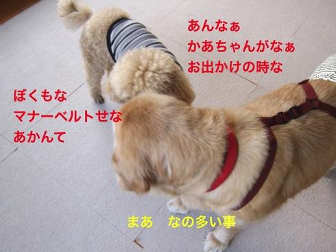 th_IMG_5002-1.jpg