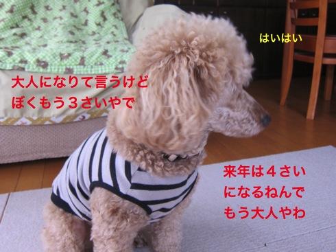 th_IMG_5056-1.jpg